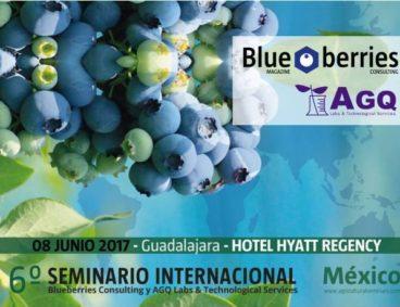 International Blueberry Seminar in Mexico