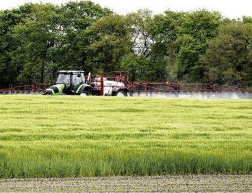 Glyphosate, most used pesticide under intense debate
