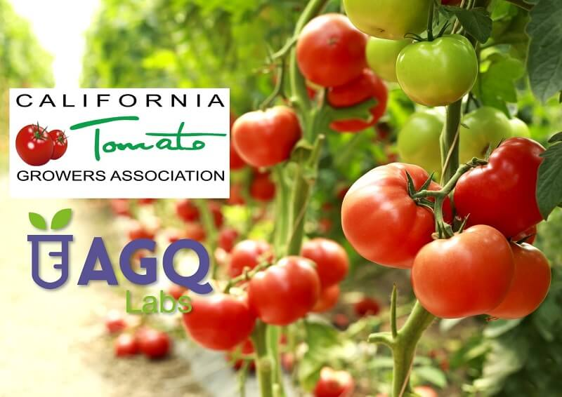 California Tomato Growers Association