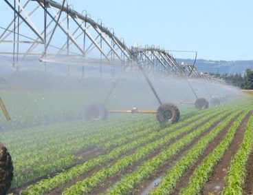 Irrigation Water Analysis and Quality