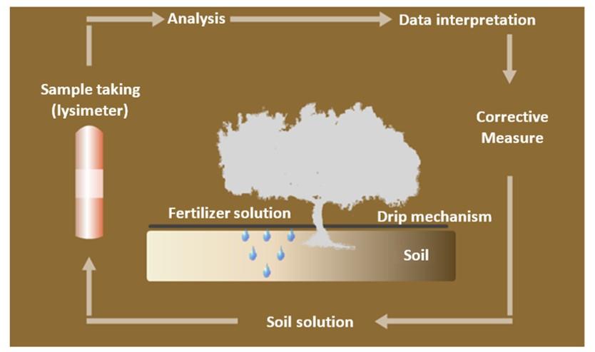 crops nutrition
