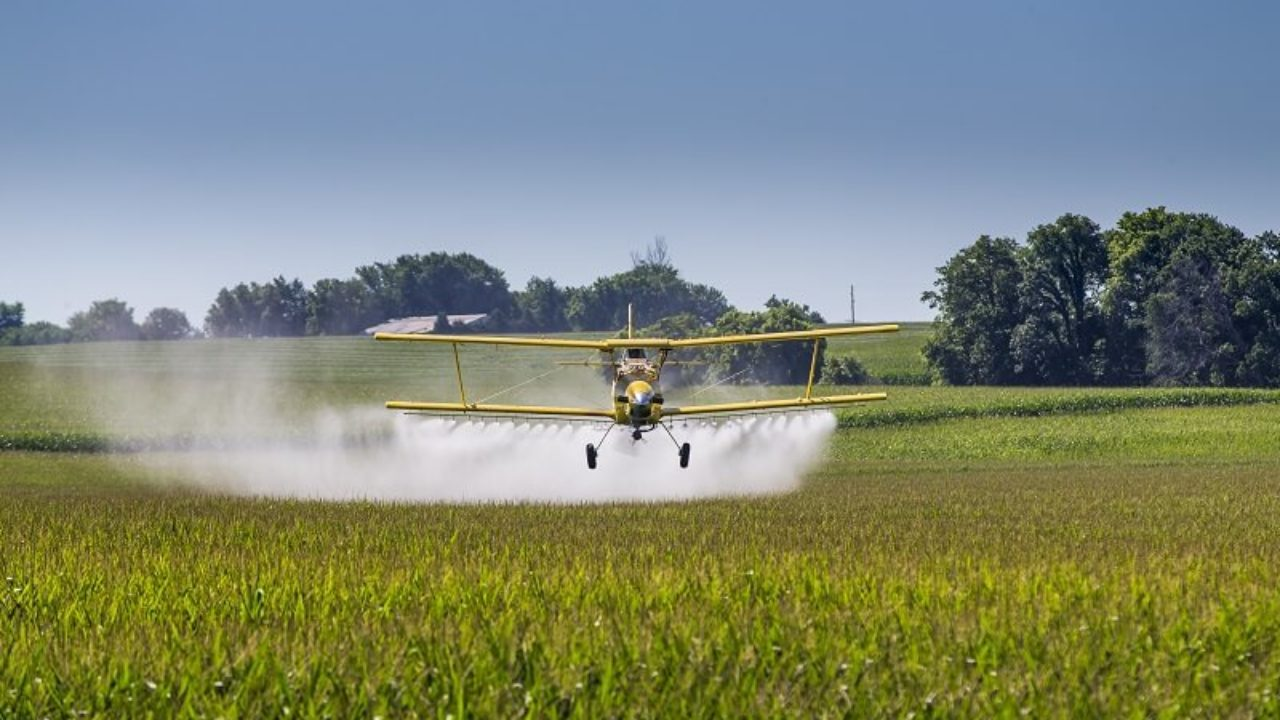 Pesticides in Foods | AGQ Labs USA