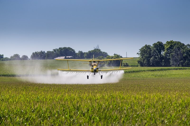 pesticides in foods